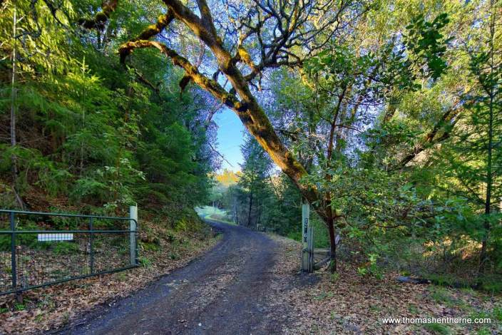 Entry gate on gravel country lane