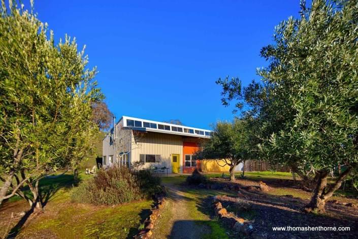 Modern industrial home