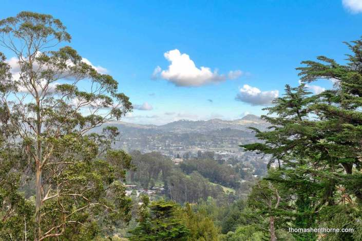 View from 125 Bayview Drive in Mill Valley