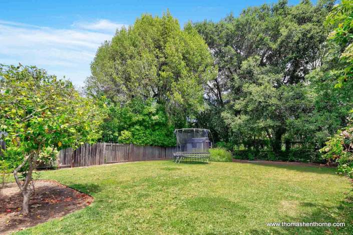 Large, Sunny & Flat Backyard