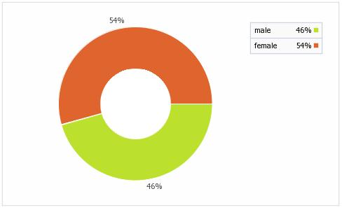 Geschlechtermix der Facebookbenutzer in Brasilien (Quelle: socialbakers.com)