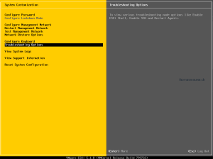 VMware ESXi 5.1 Settings