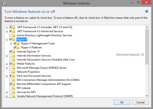 Windows 8 Hyper-V Feature