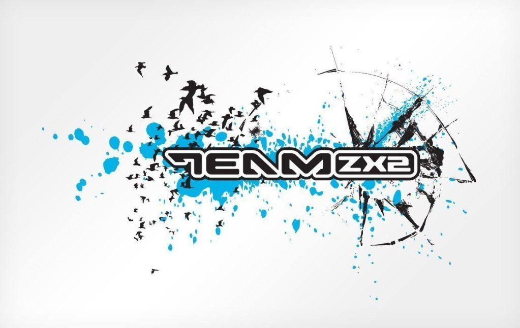 TeamZX2 T-shirt artwork (2005)