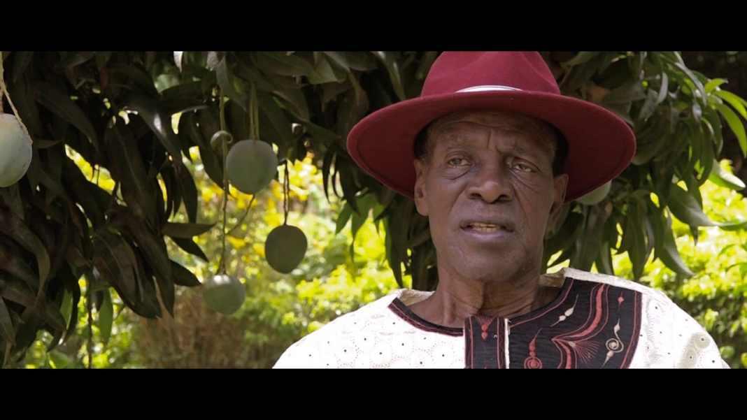 Moustapha Thiombiano
