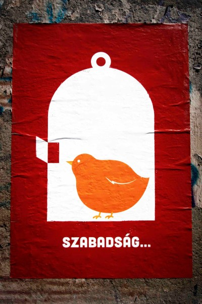 Szabadság heißt Freiheit | Plakat in Budapest (c) Tom Rübenach