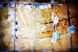 Eingezäunt und verbarrikadiert: die Rechte © Tom Ruebenach