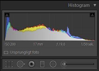 LR-histogram-10