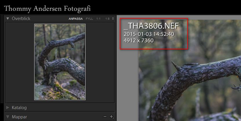 Lightroom info 1