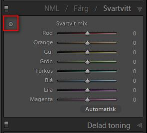 Lightroom-svartvitt-del2-03