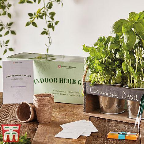 Indoor Herb Garden Seed Kit Gift Thompson Morgan