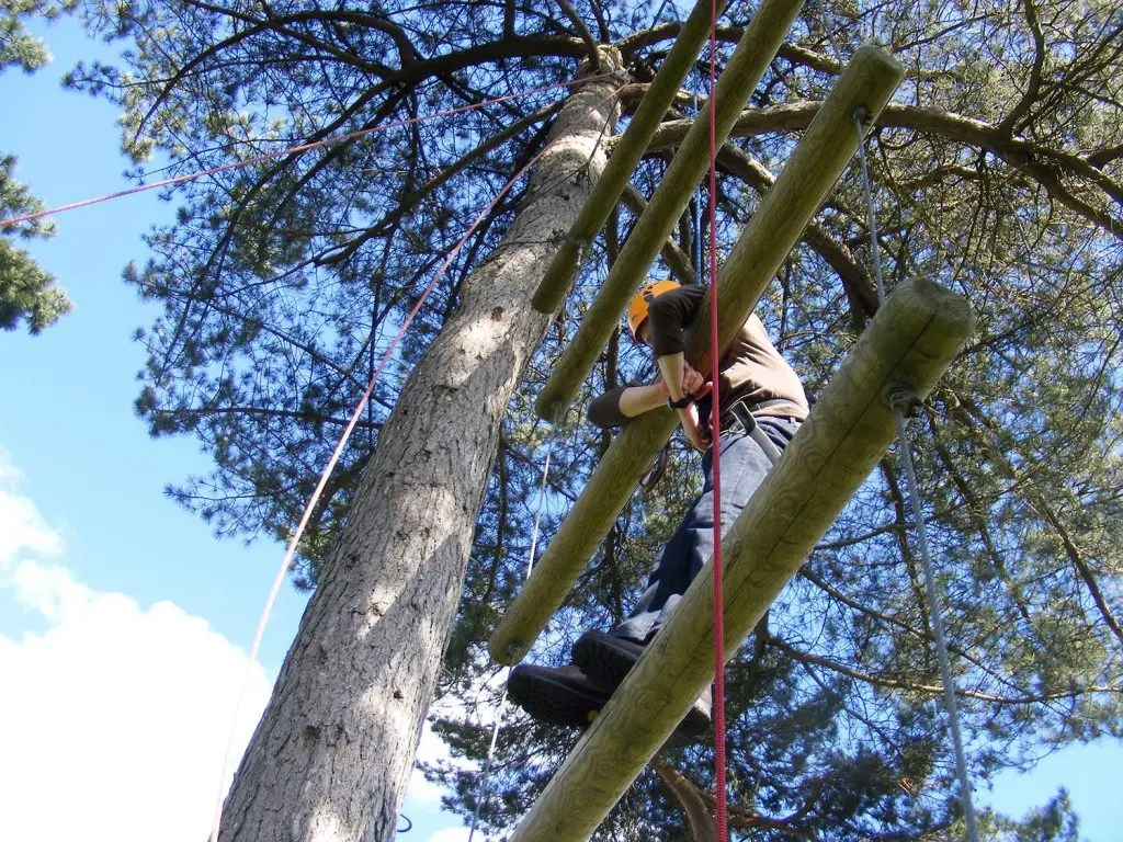 High Ropes Activities Onsite