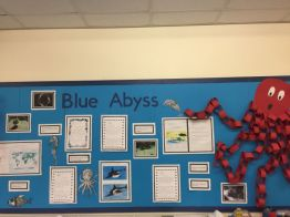 year 43 display 2