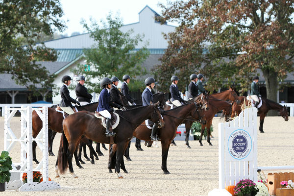 Thoroughbred show at Ky Horse Park