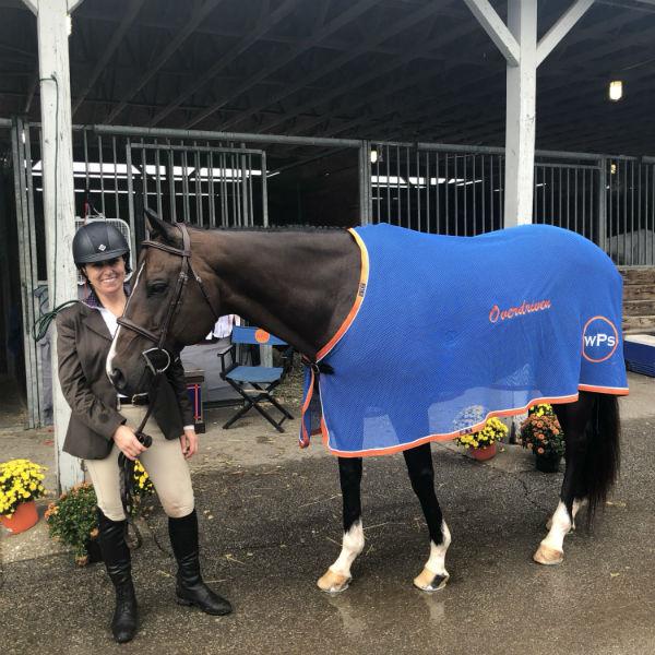 Overdriven horse park