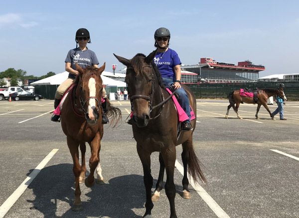 Canter for the Cause 2019