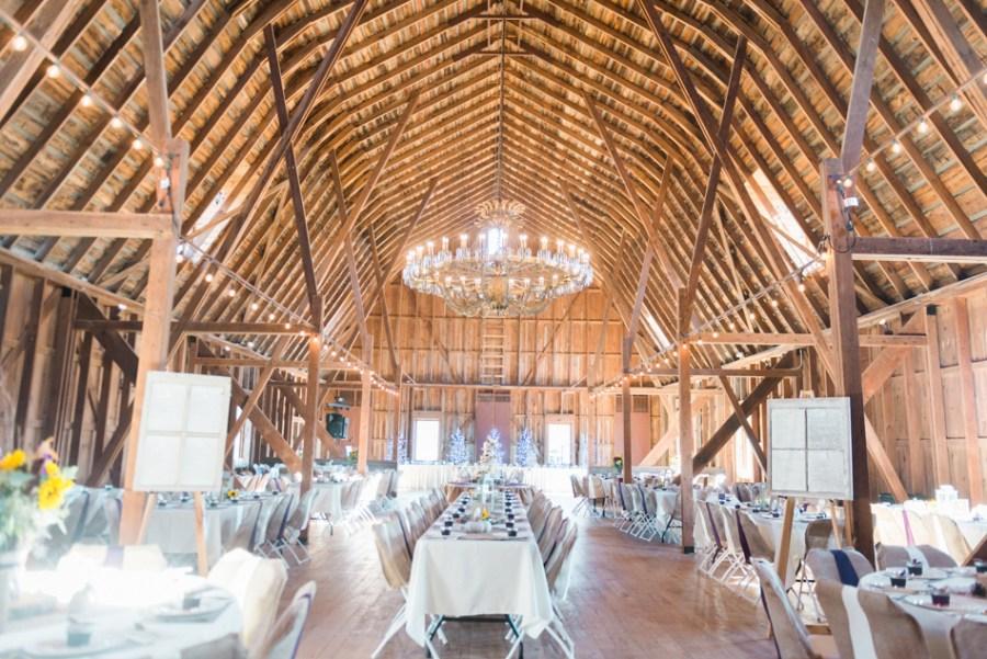 ann arbor wedding photographer barn - ld --026