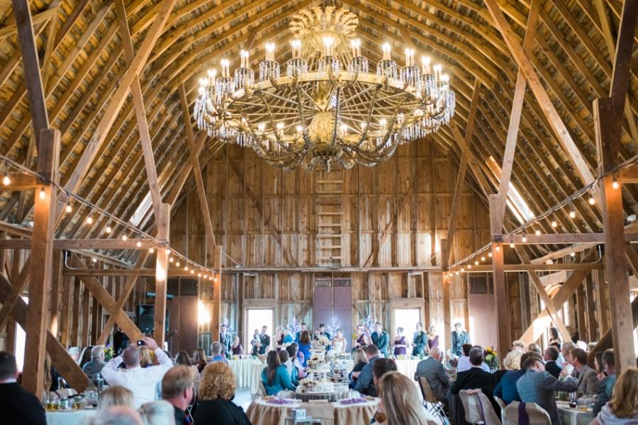 ann arbor wedding photographer barn - ld --075