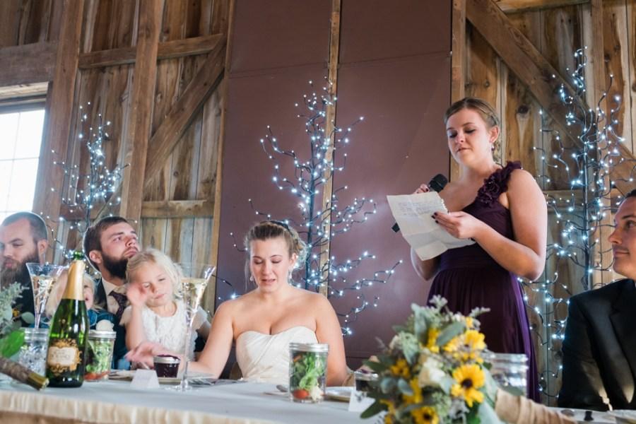 ann arbor wedding photographer barn - ld --078