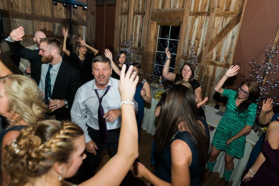 ann arbor wedding photographer barn - ld --091