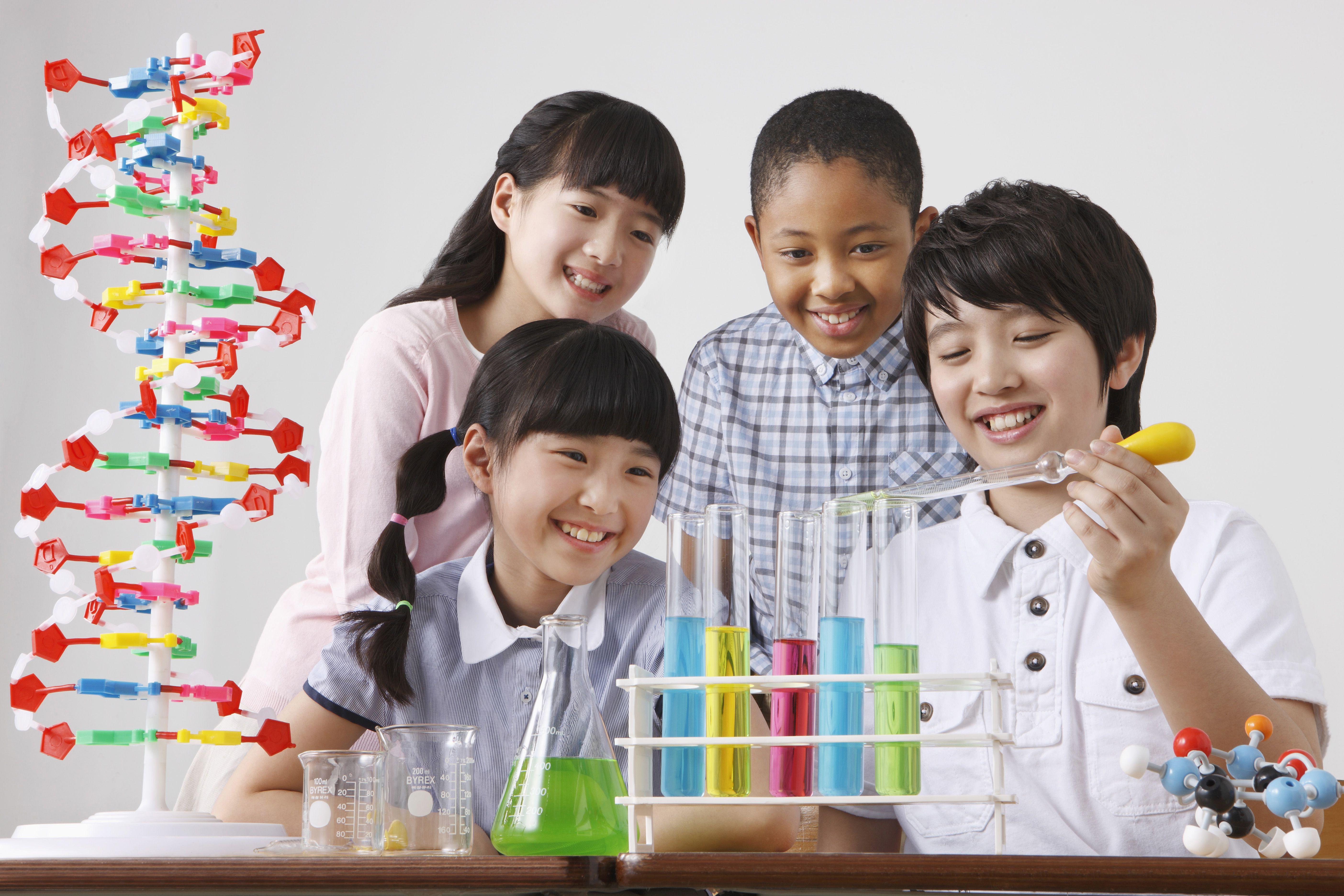 4th Grade Science Quiz