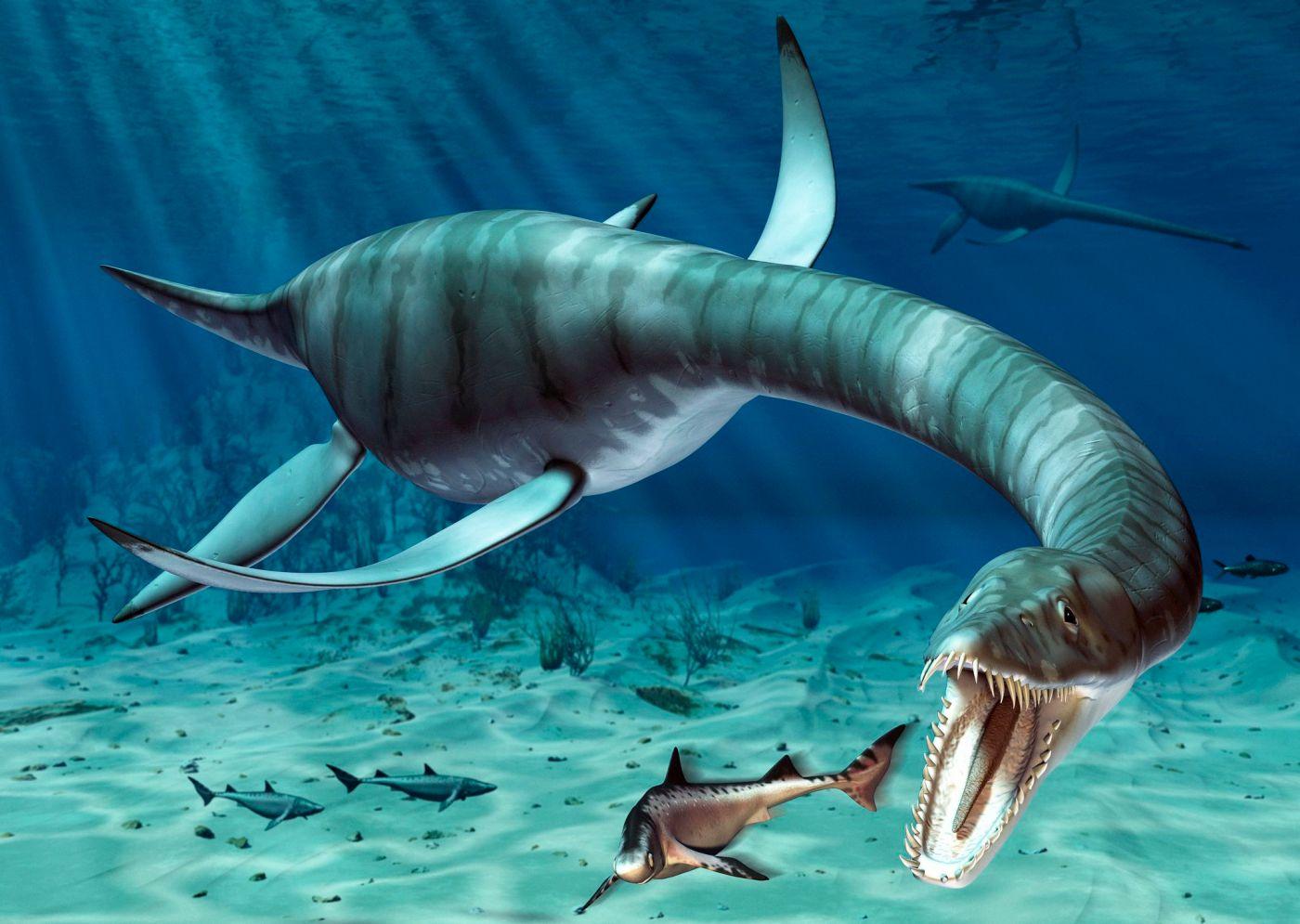 Plesiosaurus, o de pescoço comprido Marinha Reptile