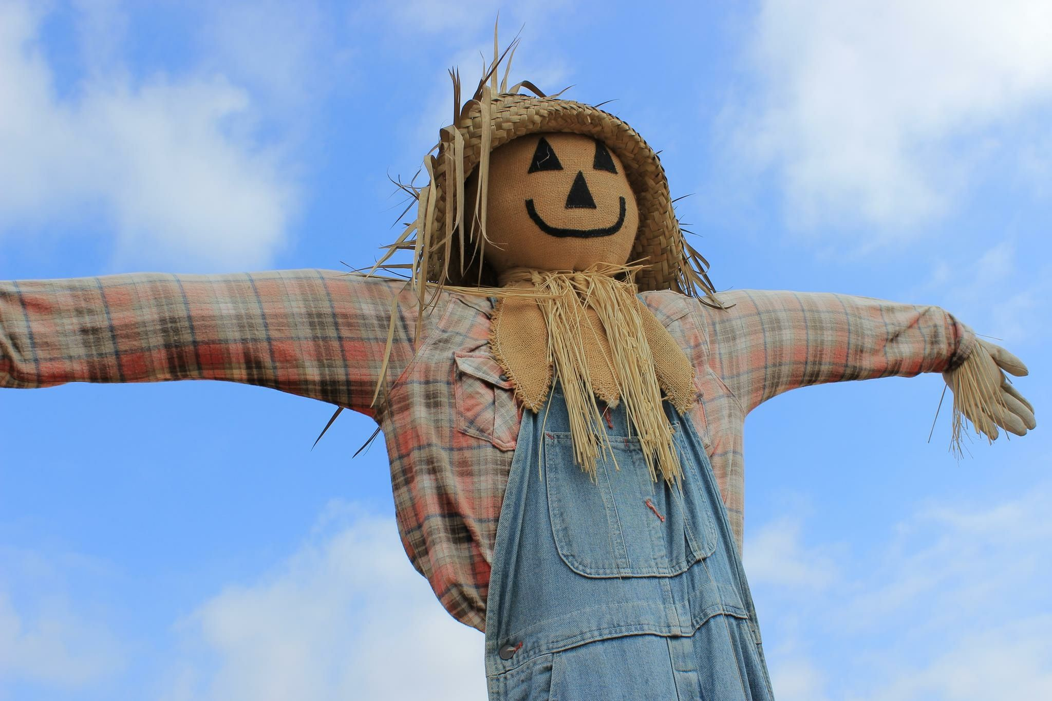 Definition And Examples Of The Straw Man Fallacy