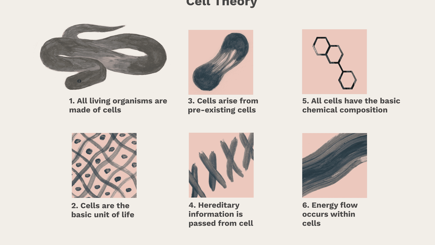 Cell Theory Parts And Function