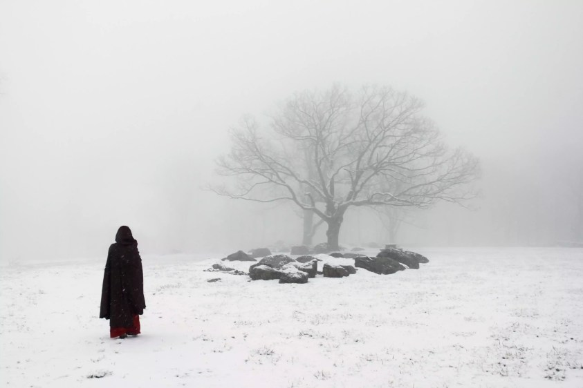 Hooded figure and tree in snow