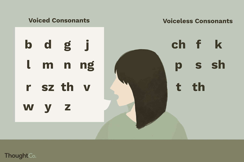 Voiced Vs Voiceless Consonants