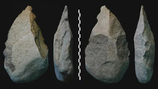 Picture of Acheulean Hand Axes used in the Early Stone age or Middle Palaeolithic period.