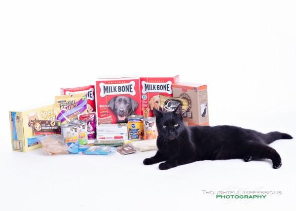 Pet Portrait Donations 1