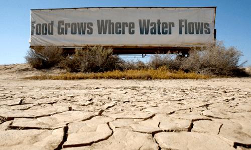 droughtfi-resized-600