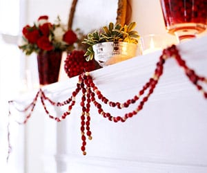 Cranberry garland decor