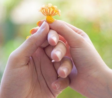 Giving a Flower as an Act of Kindness