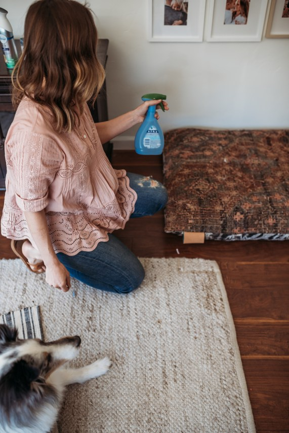 Terrific Tex and How We Keep our Home fresh with Febreze Pet | thoughtsbybrandi.com-2