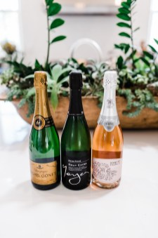 We Drink Bubbles | Lifestyle Business Branding Session | thoughtsbybrandi.com