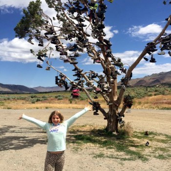Stop at interesting sights! The shoe tree outside Reno