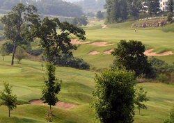 branson-golf-15-years