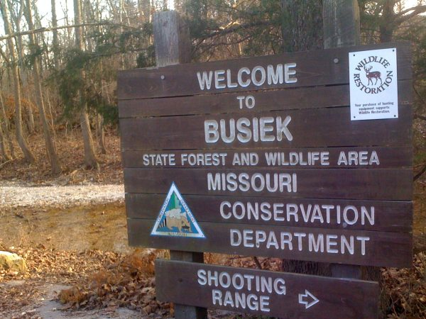 busiek-state-forest-branson
