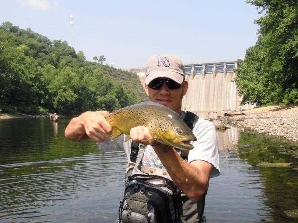 brown-trout-taneycomo