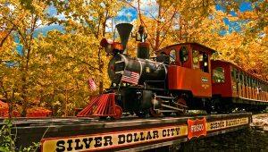 SDC-Train-at-Fall