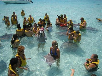Navigator Stingray City Grand Cayman 028