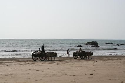 carts on the beach chaung tha