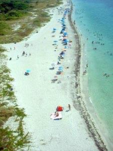 Beach from Cape Florida Lighthouse, Key Biscayne, Florida