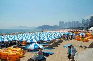 Haeundae umbrellas Busan beach