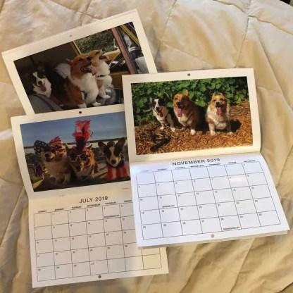 Corgi Calendar