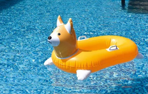 Corgi Float