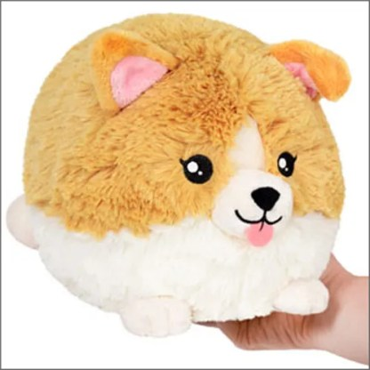 Squishable Corgi Puppy