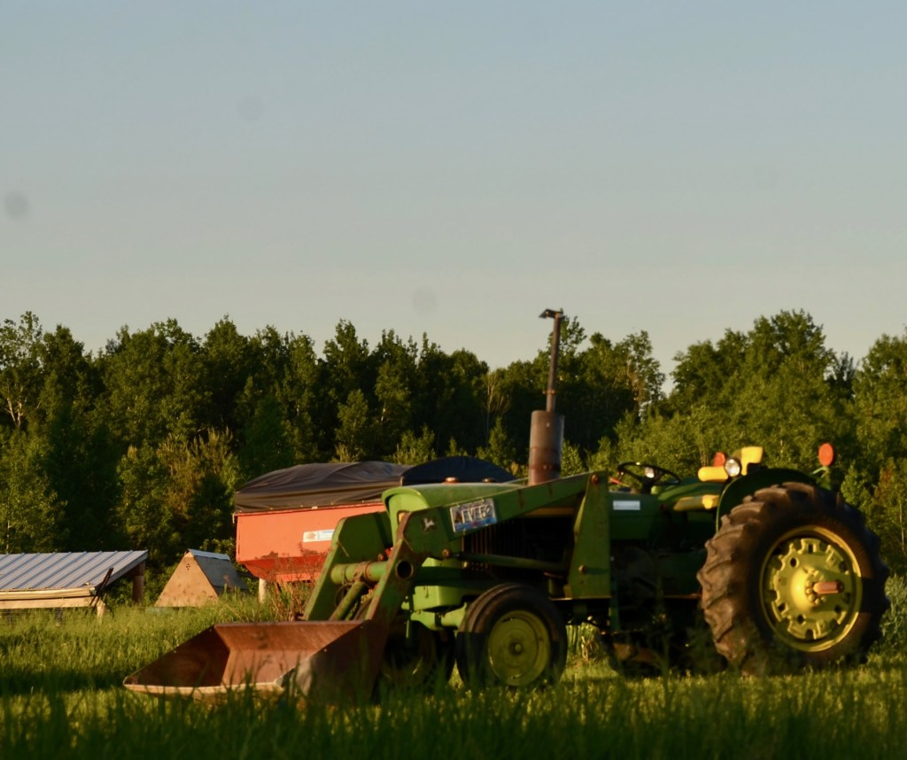 Three Forks Farm - Bobcaygeon Farm- 100-acre farm; Sustainable Agriculture, pasture raised meats, Kawartha Lakes